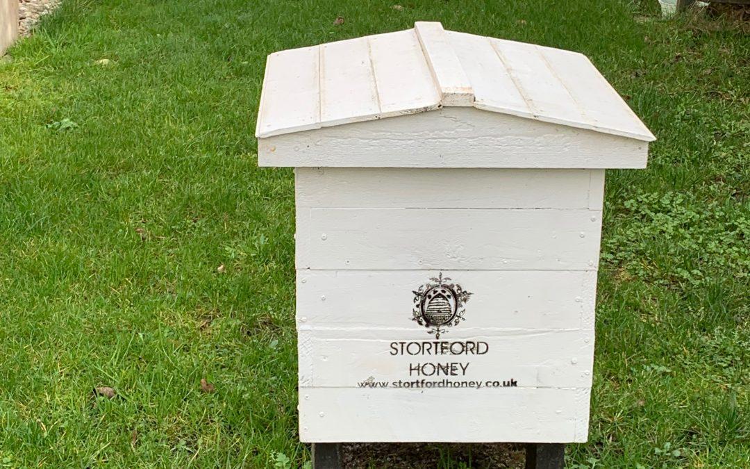 Recycled Honey Jars